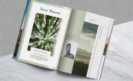 forest-magazine-3layout