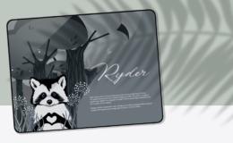 RyderScene4ste