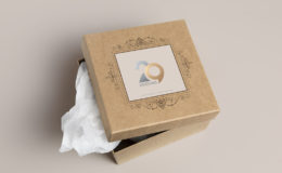 29-designs-gift-box-tan-bg
